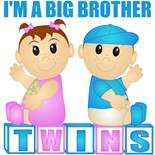 Big Brother Twins
