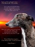 English Greyhound Prayer