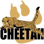 Cheetahs Lions
