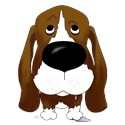 Basset hound Thongs
