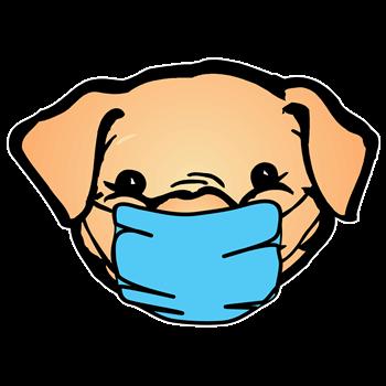 Medical Mask Pig