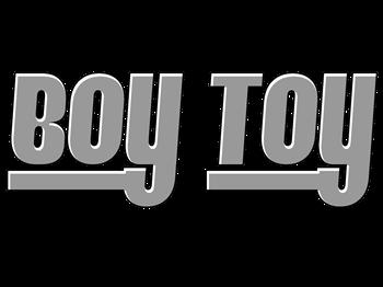 Boy Toy - Gray