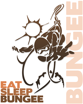 Eat Sleep Bungee