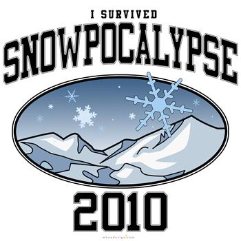 I Survived Snowpocalypse 2010