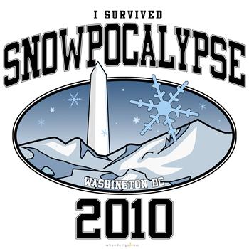 I Survived Snowpocalypse 2010 - Washington DC.