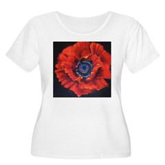 Red Poppy on Black Women's Plus Size Scoop Neck T-Shirt