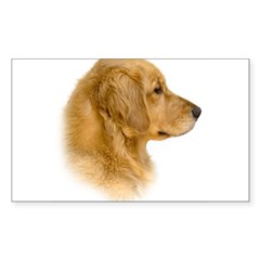 Golden Retriever Portrait Oval Sticker (Rectangle 10 pk)