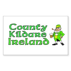County Kildare, Ireland Rectangle Sticker (Rectangle 10 pk)