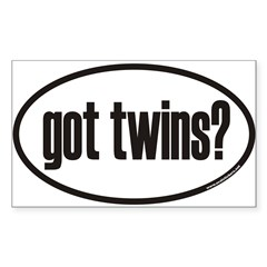 got twins? Euro Oval Sticker (Rectangle 10 pk)