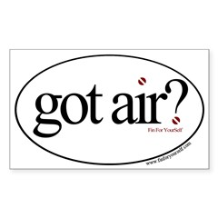 Got Air? Oval Sticker (Rectangle 10 pk)