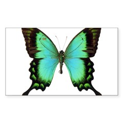 Green Butterfly Rectangle Sticker (Rectangle 10 pk)