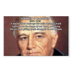 American President FDR Rectangle Sticker (Rectangle 10 pk)