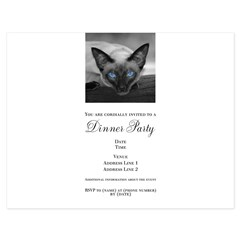 Siamese Cat B&W Photo Art 5.5 x 4.25 Flat Cards