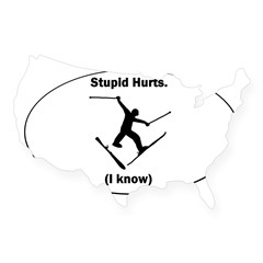 Skiing Stupid Hurts Oval USA Sticker