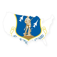Air National Guard Rectangle USA Sticker