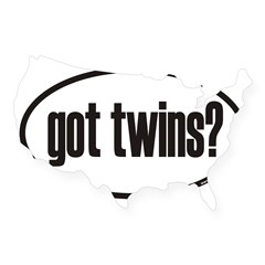 got twins? Euro Oval USA Sticker