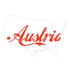 Vintage Austria Rectangle USA Sticker