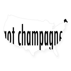got champagne? Rectangle USA Sticker