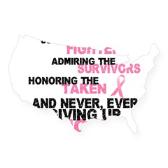 Fighters Survivors Taken 3 Pink USA Sticker