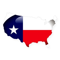 Texas Oval USA Sticker