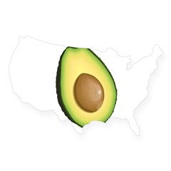 Avocado USA Sticker