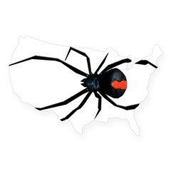 Redback Spider USA Sticker