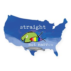 Straight But Not Narrow Oval USA Sticker