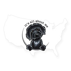 Black Labradoodle IAAM USA Sticker