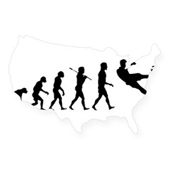 Viva La Evolucion De Futbol USA Sticker