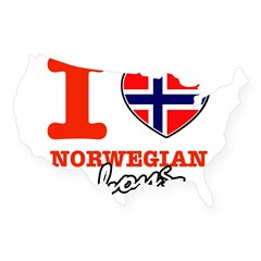 I love Norwegian Boy USA Sticker