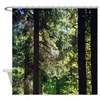 Pine Forest Trail Bavaria Shower Curtain