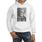 Anaximenes Air Philosophy Hooded Sweatshirt